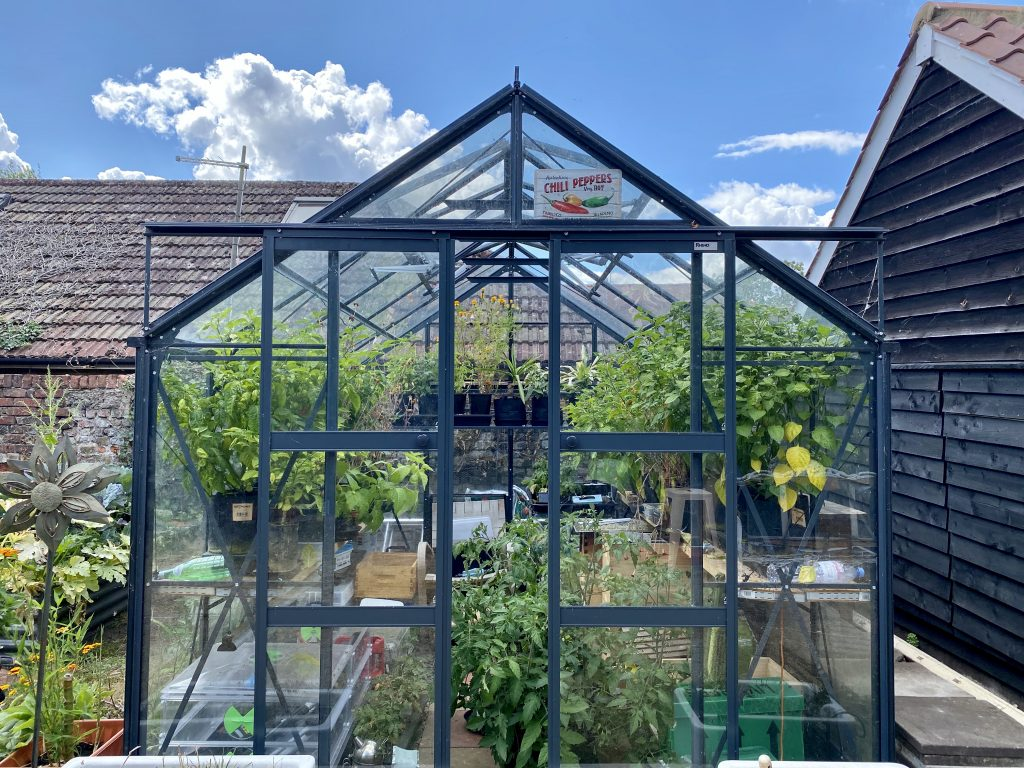Eco Garden for August