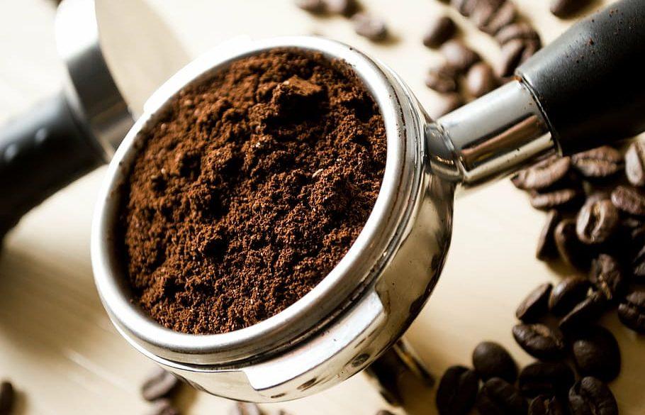Win Bird & Wild Shade Grown Coffee