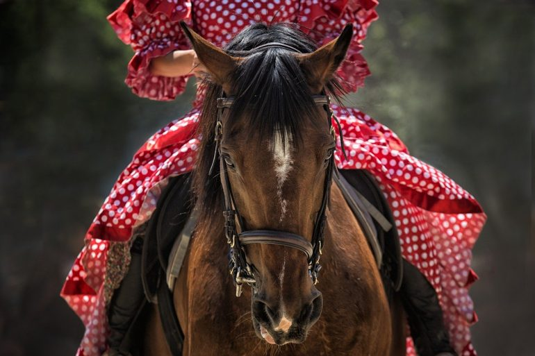 Tips for Staying Safe When Out Riding Your Horse