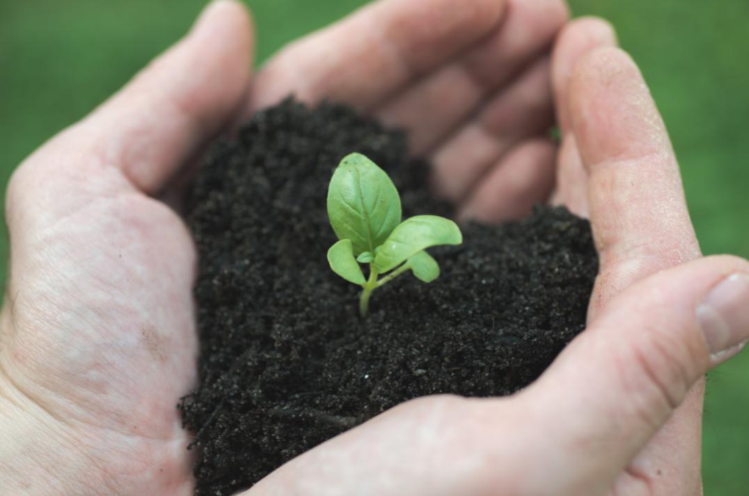 Safe Soil UK - Your Soil in Safe Hands